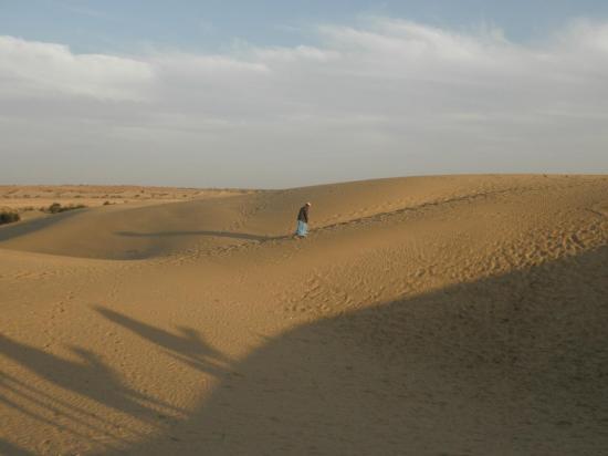 désert du Thar