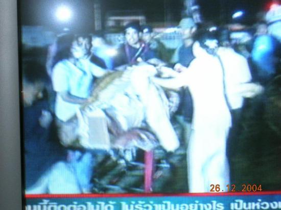 THAILANDE 2004 dec261